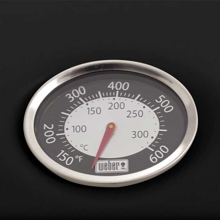 Deckelthermometer Q Serie /Spirit (ab 2013)